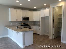 White Cabinets Grey Walls Gray Grey Walls Light Wood Floors White Cabinets And Grey
