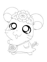 Image Result For Schattige Diertjes Kleurplaten Hamsters Hamtaro