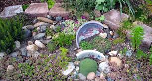 rock garden ideas flower photograph this is my mini rock g