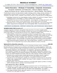 Resume Samples Chief Information Officer CIO Banking