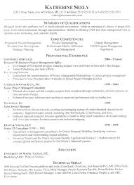 Business Resume Example