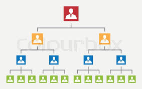 Organization Hierarchy In Company Stock Vector Colourbox
