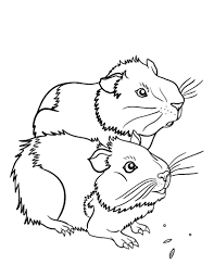 Small Picture Printable guinea pig coloring page Free PDF download at http