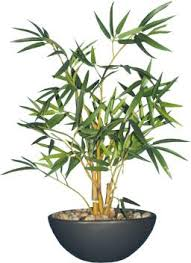 Fourwalls <b>Bamboo</b> Bonsai <b>Artificial Plant with</b> Pot Price in India - Buy ...