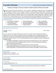 Best Resume Format For Executives Resume Sample