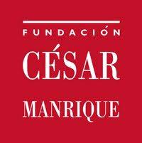 Afbeeldingsresultaat voor fundacion' cesar manrique