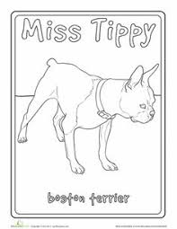 Small Picture Boston Terrier dog coloring page for kids animal coloring pages