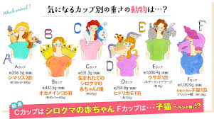 F Cup Bra Size Chart How Much Do Boobs Weigh Genies Chart Tells You If Your