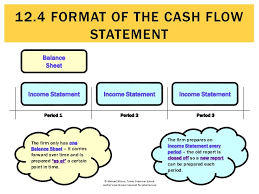 cash flow statements 12 4 format of the cash flow statement