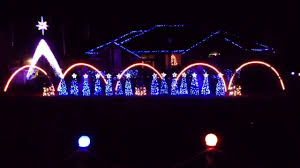 Florida Gator Lights Gators Christmas Lights