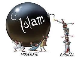 """Résultat de recherche d'images pour """"muslim invasion"""""""