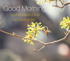 Good Morning Best Images 24 Best Good Morning Images Pics Collection Best Whatsapp Status 9