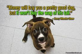 Dog Quotes Inspirational Adorable Nobody Can Fully Understand Love Until They Are Owned By A Dog