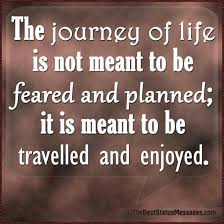 Life Is A Journey Quotes Enchanting Life Is A Journey Quote Insta Quotes Wild Orange Living Travel