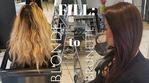 fill blonde hair to chocolate brunette