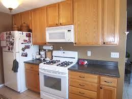 Plain White Kitchen Cabinets Astonishing Ideas Oak Cabinets Painted White Wonderful 17 Best