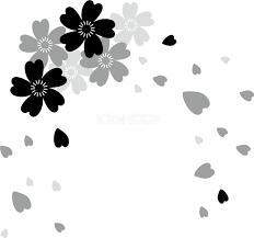 グレースケールの桜飾りの可愛い花びら透過 白黒イラスト背景なし83159