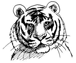 Coloriage Tigre Rigolo