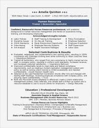 Smart Resume Fascinating Smart Resume Builder Beautiful Cv Maker Professional Examples Line
