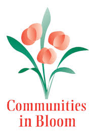 Image result for communities in bloom