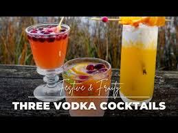 vodka infused gypsy fruit drink vodka