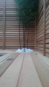 Western Red Cedar 20 X 45mm P A R Fencing Southgate Timber