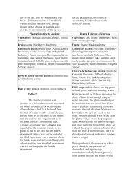 personal narrative essay basketball argumentative research paper topics high school