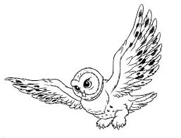 Cartoon Snowy Owl Coloring Pages Clickcoloring