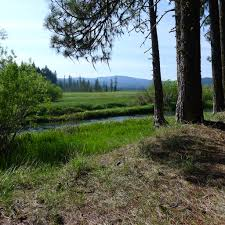 Yellow Creek Designs Yellow Creek Campground This Is A World Class Fly Fishing