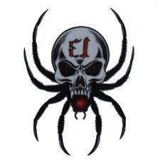 Tetování Nalepovací Pavouk Lebka