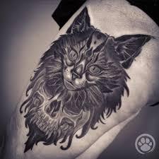 Tatuaggi Gatti Come Immortalare Il Vostro Amico A 4 Zampe