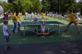 Площадка для игры в бадминтон и настольный теннис