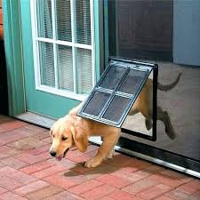 prevent dog from scratching door stop dog from scratching door protects screen or other type door
