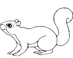 Small Picture Get This Printable Squirrel Coloring Pages for Kids 5prtr