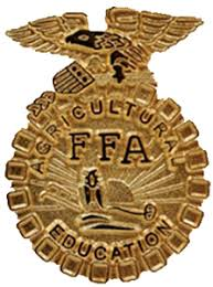 Image result for blue and gold ffa medals