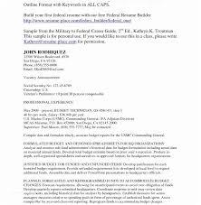 Top Resume Reviews Fascinating Federal Resume Writing Federal Resume Writing Services Reviews