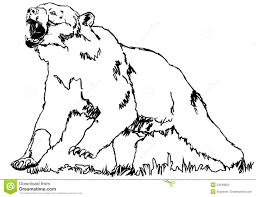 Bear Grizzly Stock Photos Image 22648803