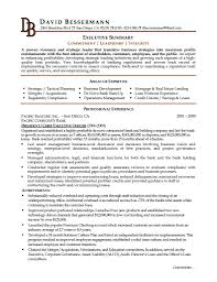 Examples Of Professional Summary On A Resume Professional Summary For Students Resume Cover Letter 20