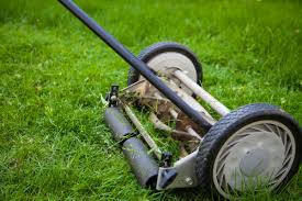 lawn boy riding mower. is a reel lawn mower right for you? boy riding