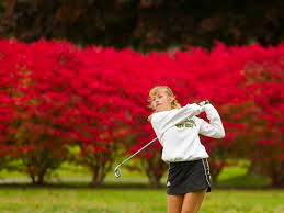Prep roundup: Traverse City West wins conference titles in golf, soccer |  News Break