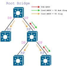 Designated Port Vs Root Port Stp Part 1 Stp 802 1d 1998 Cisco Networking