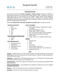 Emr Business Analyst Resume Global Developer Implementation Plan