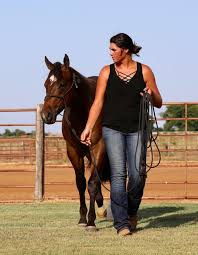 Looking for an Intern for the month... - Voge Quarter Horses ...