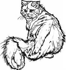 Small Picture Halloween Coloring Pages kitty homework Colouring Pages page 2