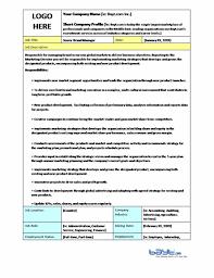 Sample Job Description Template Senior Brand Manager Job