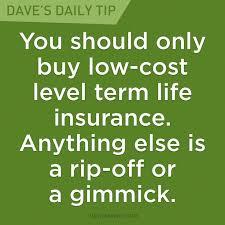 Level Term Life Insurance Quotes Impressive Download Level Term Life Insurance Quote Nasenovosti Quotes