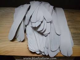 angel wing feathers