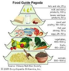 Protein Vitamins Minerals Fats And Carbohydrates Chart Human Nutrition Importance Essential Nutrients Food