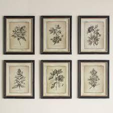 antiqued stems wall art set of 6  on wall art set of 6 with framed wall art set of 6 wayfair