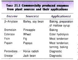 Enzyme Technology Application And Commercial Production Of
